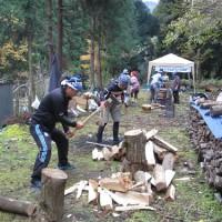 理想の森プロジェクト