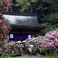 2濡れ色の山寺